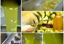Zeytinyağı Fiyat Analizi